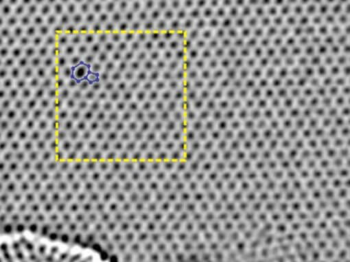 Thermally Induced Dynamics of Dislocations in Graphene at Atomic Resolution