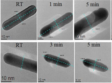 Kinetically controlled fabrication of gold nanorods and investigation of their thermal stability via insitu TEM heating