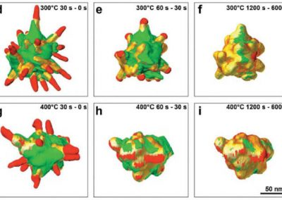 3D characterization of heat-induced morphological changes of Au nanostars by fast in situ electron tomography