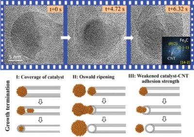 Growth and Termination Dynamics of Multiwalled Carbon Nanotubes at Near Ambient Pressure: An in Situ Transmission Electron Microscopy Study