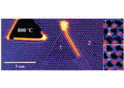 In situ high temperature atomic level dynamics of large inversion domain formations in monolayer MoS2