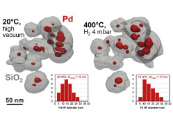 Fast electron tomography: Applications to beam sensitive samples and in situ TEM or operando environmental TEM studies