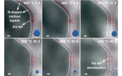 In Situ helps to understand the recovery of deactivated palladium catalyst