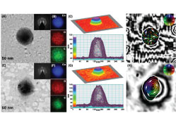 Effect of annealing on the magnetic states of FEBID-grown cobalt nanopatterns examined by off-axis electron holography