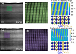 Reversible thermal strain control of oxygen vacancy ordering in an epitaxial  La<sub>0.5</sub>Sr<sub>0.5</sub> Co O<sub>3−δ</sub>  film