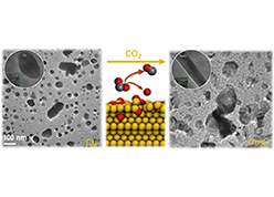 Visualizing oxidation of Cu nanoparticles at atomic resolution during the reverse water-gas shift reaction