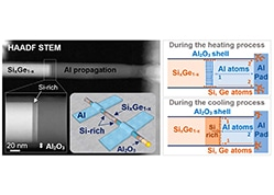 Reversible Al Propagation in SixGe1–x Nanowires: Implications for Electrical Contact Formation