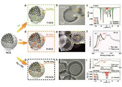 Dual-Metal Interbonding as the Chemical Facilitator for Single-Atom Dispersions