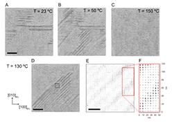 Individual Barkhausen pulses of ferroelastic nanodomains