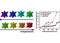 Thermal Stability of Gold/Palladium Octopods Studied in Situ in 3D: Understanding Design Rules for Thermally Stable Metal Nanoparticles