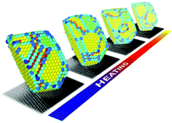 Three-dimensional atomic structure of supported Au nanoparticles at high temperature