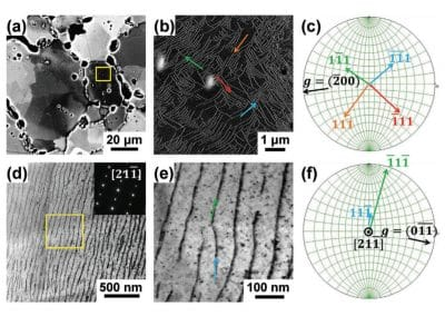Parallel Dislocation Networks and Cottrell Atmospheres Reduce Thermal Conductivity of PbTe Thermoelectrics