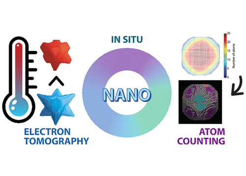 Three-Dimensional Nanoparticle Transformations Captured by an Electron Microscope