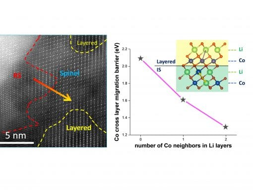 Interface cation migration kinetics induced oxygen release heterogeneity in layered lithium cathodes