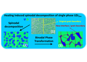 Understanding Spinodal and Binodal Phase Transformations in U-50Zr