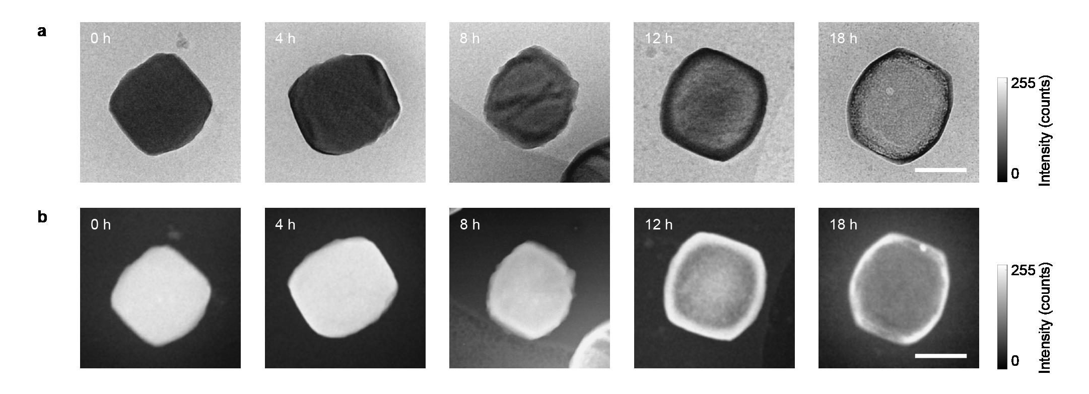 Figure 2 Hanglong article
